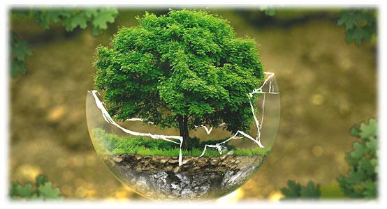 Miljö